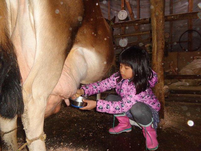 http://www.yamabuki-greenfarm.jp/blog/s-DSC02798.jpg