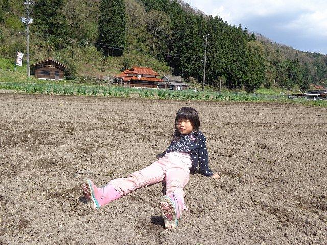 http://www.yamabuki-greenfarm.jp/blog/s-DSC03051.jpg