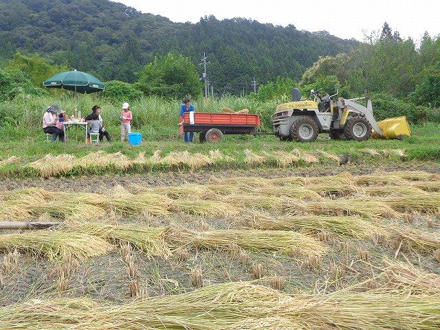 http://www.yamabuki-greenfarm.jp/blog/s-DSC03325.jpg