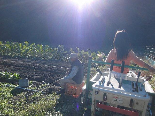 http://www.yamabuki-greenfarm.jp/blog/s-DSCF1495.jpg