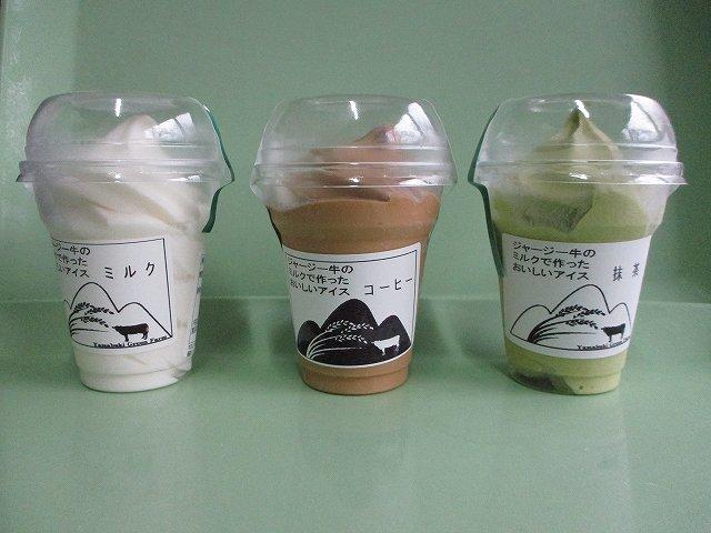 http://www.yamabuki-greenfarm.jp/blog/s-IMG_0531.jpg