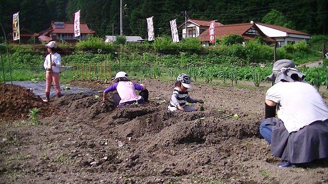 http://www.yamabuki-greenfarm.jp/blog/s-PIC_0340.jpg